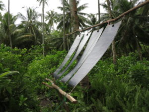 aventure énergie solaire webrobinson raphaël domjan